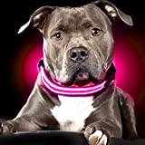 Ultimate LED Dog Collar – USB Rechargeable, cable included, 5 awesome colors. Ultra Bright, Durable, Made to last. Make your dog more visible at night (Large Pink)