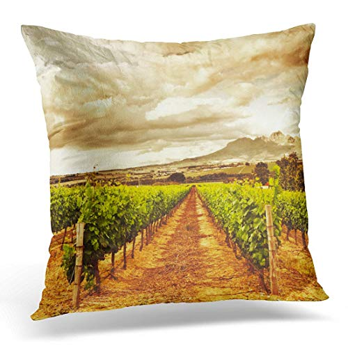 Lovwepilo Throw Pillow Covers Grape Valley Harvest Season Beautiful Sunset Over Vineyard Plantation Fruits Winery Farm Retro Autumn Decorative Pillows case 18 x 18 Inches Home Decor Sofa Cushion Cover ()