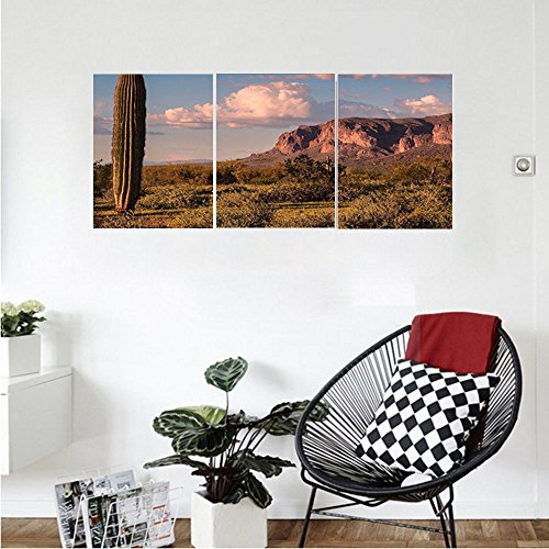 Liguo88 Custom canvas Saguaro Cactus Decor Wall Hanging Mountain State Park with Non Spiral Sided Leaf Aleo Storage Landscape Photo Bedroom Living Room Decor Brown Blue (Quart Flat Sided Stainless Steel)