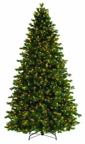 Bethlehem Lighting GKI Savannah Spruce Medium Christmas Tree with 750 Clear Mini Lights, 7.5'