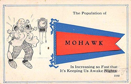 Mohawk New York Crying Baby Pennant Flag Comic Antique Postcard K97178