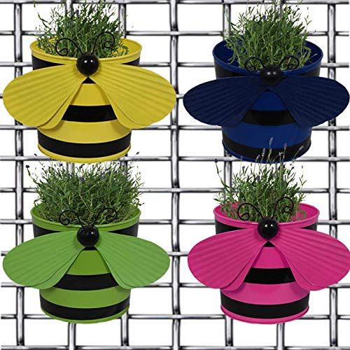 Bee Plant Pots