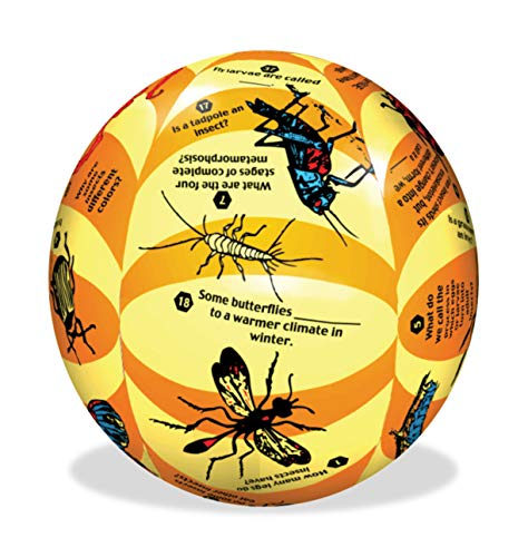 American Educational Vinyl Clever Catch Elementary Science Insects Ball, 24