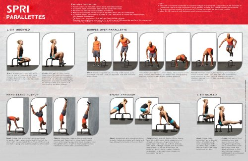 Parallettes Build Muscle