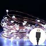 Seewa LED String Light, 66ft 200 LED Dimmable Waterproof Decorative Lights with Remote Control for Indoor and Outdoor, , Bedroom, Patio, Garden, Wedding, Parties (200 LED white)