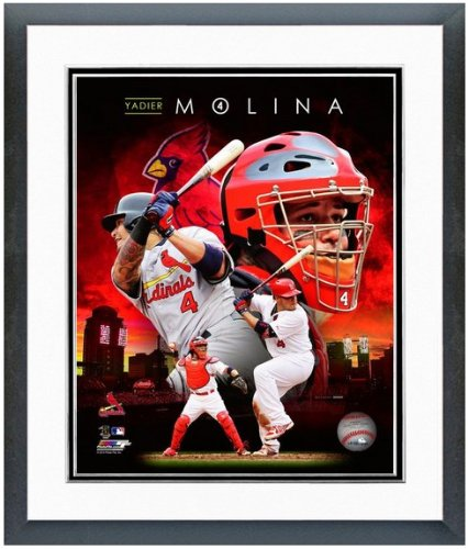 Molino Glass - Yadier Molina St. Louis Cardinals 2014 MLB Composite Photo (Size: 12.5