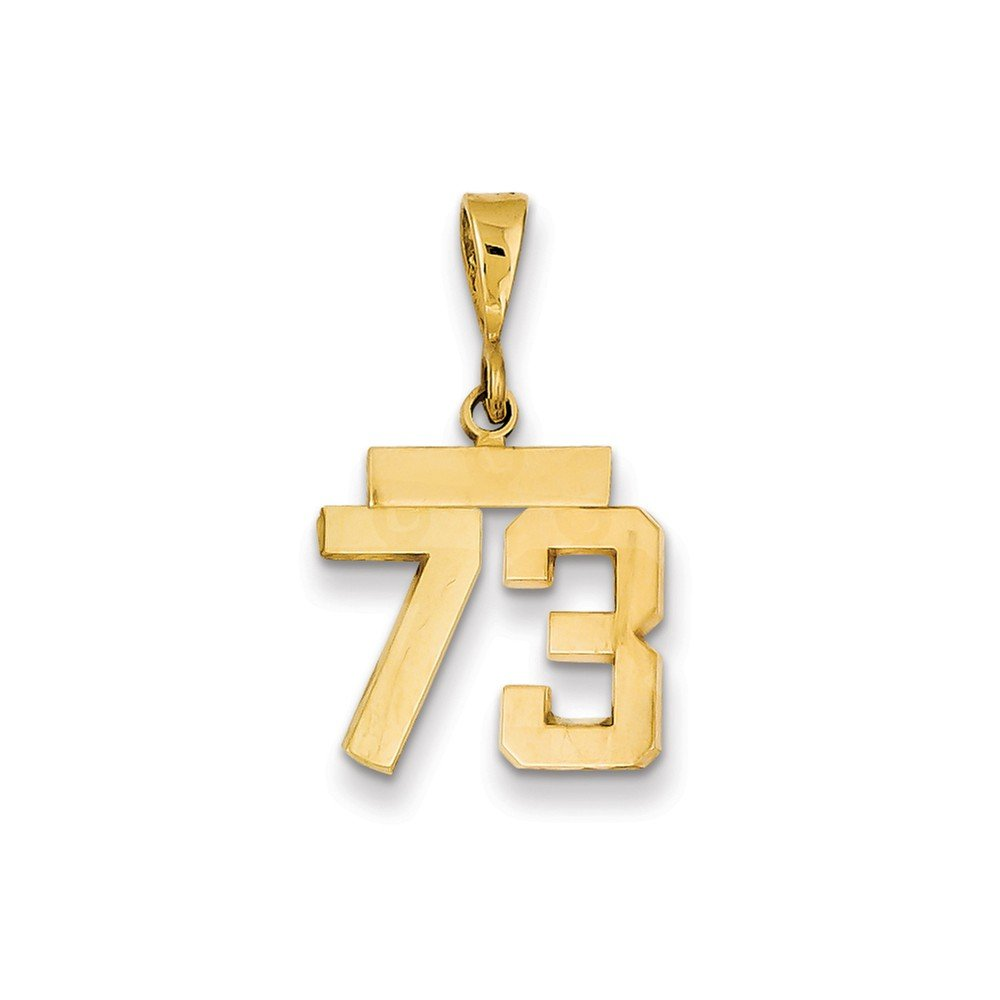 14K Yellow Gold Small Polished Number 73 Charm