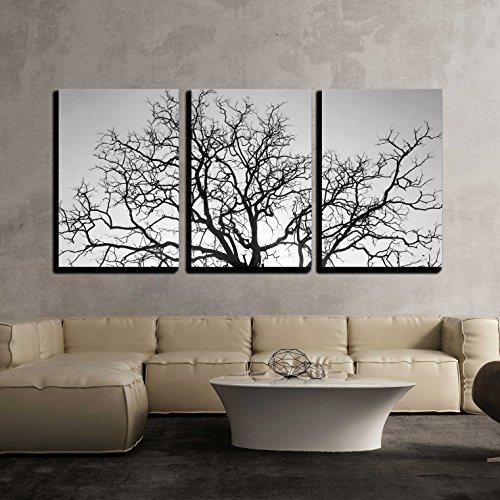 wall26 - 3 Piece Canvas Wall Art - Dead Tree Branch, Black and White - Modern Home Decor Stretched and Framed Ready to Hang - 24