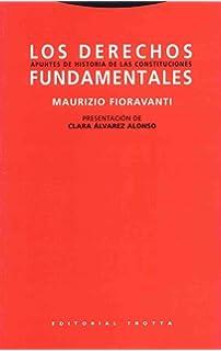 Derechos fundamentales: Apuntes de historia de las constituciones ...