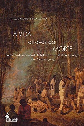 A vida através da morte: Formação do mercado de trabalho livre e o destino dos negros Rio Claro, (1875-1930)