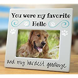 Banberry Designs Pet Memorial Picture Frame - Bereavement Photo Frame for Dog or Cat - You were My Favorite Hello and My Hardest Goodbye