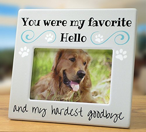 Banberry Designs Pet Memorial Picture Frame - Bereavement Photo Frame for Dog or Cat - You Were my Favorite Hello and My Hardest Goodbye (Heart Message Plaque)