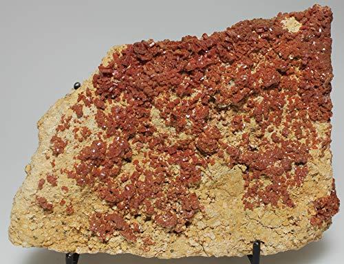 Fine Red Vanadinite Lustrous Crystals - Mibladen, ()