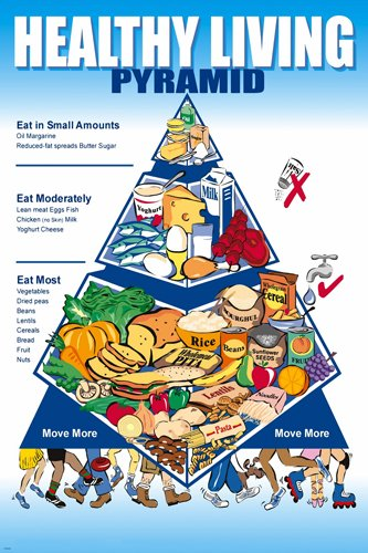 healthy LIVING food PYRAMID ad POSTER 24X36 NUTRITION educational DETAILED - Food Pyramid Poster