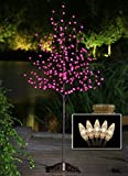 Lightshare 6-Feet 208L LED Rose Flower Tree with C7 Decoration Light, Warm White