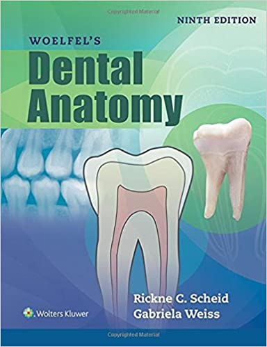 Woelfels Dental Anatomy by Rickne C. Scheid (2016-02-25)