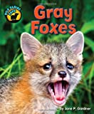 img - for Gray Foxes (Wild Canine Pups) book / textbook / text book