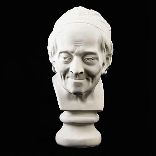 GoNear Decoration Bust of Voltaire Sculpture Statue Resin Sketch Draw Plaster Artist Model Decor, Height 7.5