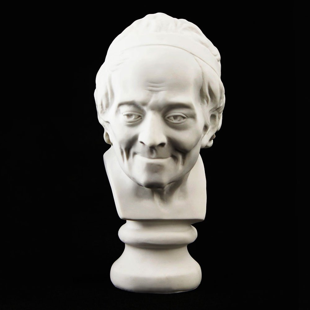 GoNear Decoration Bust of Voltaire Sculpture Statue Resin Sketch Draw Plaster Artist Model Decor, Height 7.5''