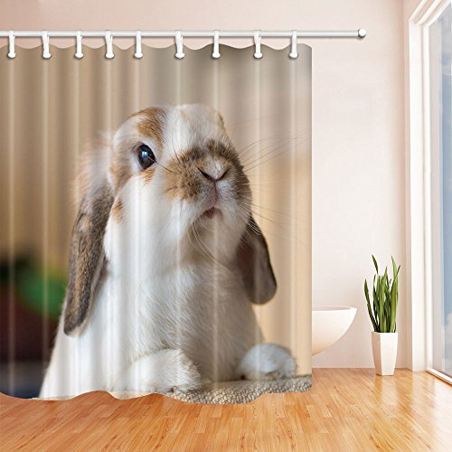 NYMB House Decor Cute White Rabbit Shower Curtain in Bath 69X70 inches Mildew Resistant Polyester Fabric Bathroom Fantastic Decorations Bath Curtains Hooks Included (Rabbit Rug)