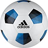 Adidas 11 Pro Competition Soccer Ball