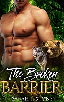The Broken Barrier (Shadow Claw Book 4) by [J. Stone, Sarah]