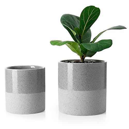 Terra Cotta Oval Planter - 8