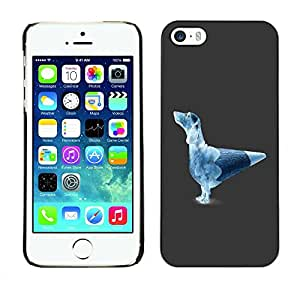 PC/Aluminum Funda Carcasa protectora para Apple Iphone 5 / 5S Funny Pencil Dog / JUSTGO PHONE PROTECTOR