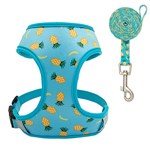 EXPAWLORER Dog Harness and Leash Set - Adjustable Soft Padded Puppy Vest Harness - Pineapple Sunflower Double-Sided Printed - for Small Dogs Cats, Medium