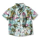 Xirybaby Kids Boys Button Down Shirt Hawaiian Aloha Holiday Short Sleeve Dress Shirts Summer Cartoon Print Tops