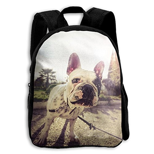 Kids School Bag Double Shoulder Print Backpacks Bulldog Look At You Travel Gear Daypack - Polo Kids Coupon