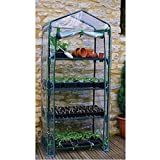 Mini Greenhouse 4-Tier 27'' Long x 18'' Wide x 63'' High Seedlings Spring Garden .#GH45843 3468-T34562FD815267