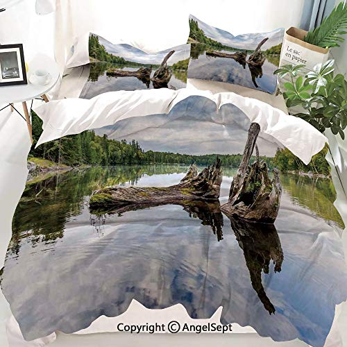 Homenon Driftwood Decor Decor Duvet Cover Set King Size,Remains of a White Cedar Tree Trunk in Lake and The Sky Digital,Decorative 3 Piece Bedding Set with 2 Pillow - Cedar Tree Trunk Red