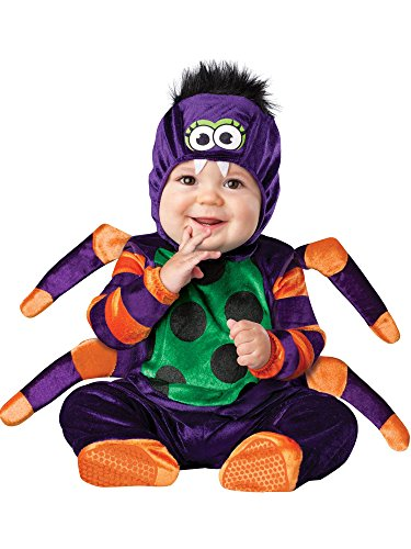InCharacter Costumes Baby's Itsy Bitsy Spider Costume, Purple/Green/Orange/Black, Small (Children's Nursery Rhyme Character Costumes)