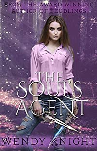 The Soul's Agent by Wendy Knight ebook deal
