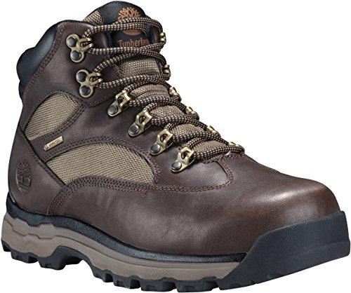(Timberland Chocorua Trail 2 Mid GTX Boot - Men's Dark Brown Full Grain, 10.0)