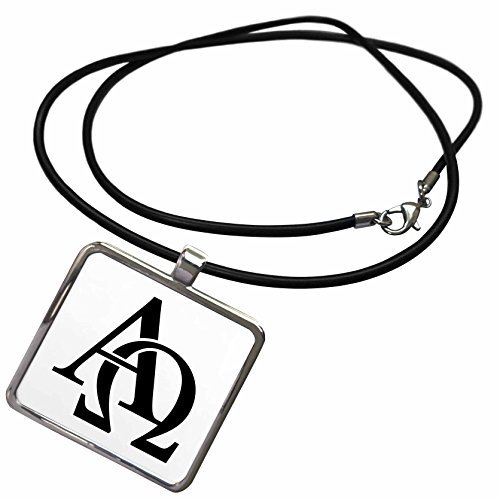 3dRose EvaDane - Signs - Alpha Omega - Necklace With Rectangle Pendant (ncl_157419_1)