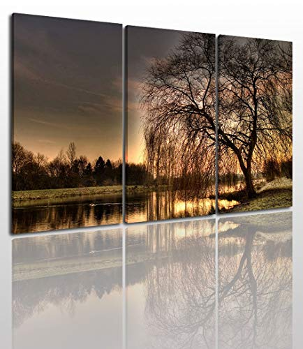 - Beautiful Landscape Canvas Wall Art Painting Modern Design Picture For Home Office Decor - 3 Pieces Scienic Tree By Lake Framed On Wooden Frame Image Pictures Photo Artwork Decoration Ready To Hang