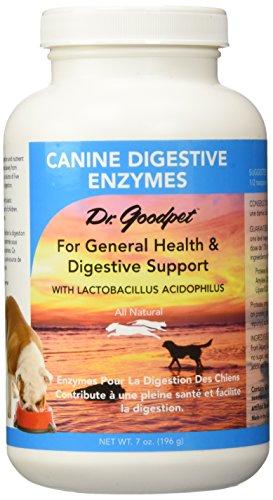 Dr Goodpet Formula Digestive Enzymes