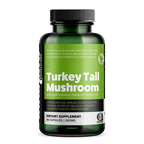 Bushido Naturals Mushroom Certified Organic product image
