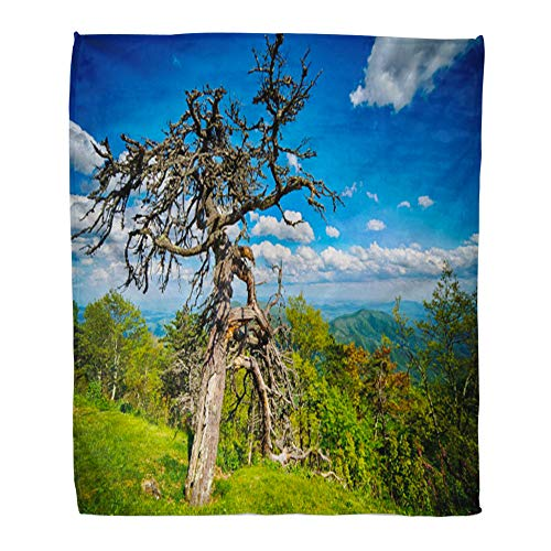 Emvency Throw Blanket Warm Cozy Print Flannel America Springtime at Scenic Blue Ridge Parkway Appalachians Smoky Mountains Comfortable Soft for Bed Sofa and Couch 60x80 Inches