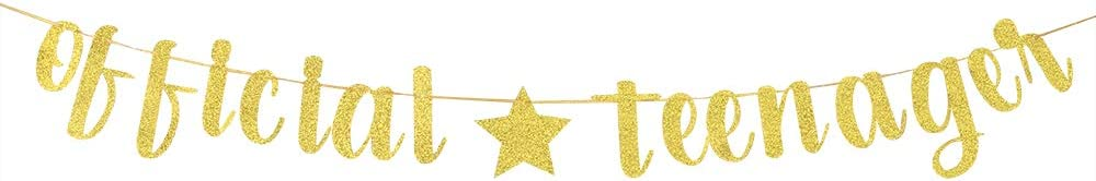 13th Birthday Banner Gold Official Teenager Banner 13th Birthday Party Decoratons 13th Birthday Party Sign