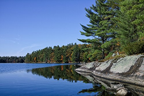 Posterazzi Poster Print Collection Trees At Small Lake in Mu