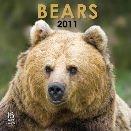 2011 Bears Calendar (2010 Calendar Bears)