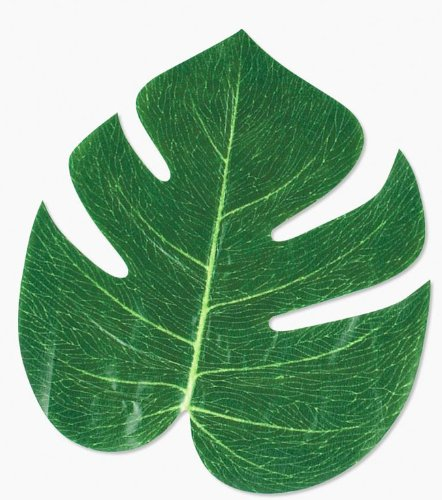 """Fun Express FX IN-70/1514 Tropical Leaves (Pack of 12), 8"""""""