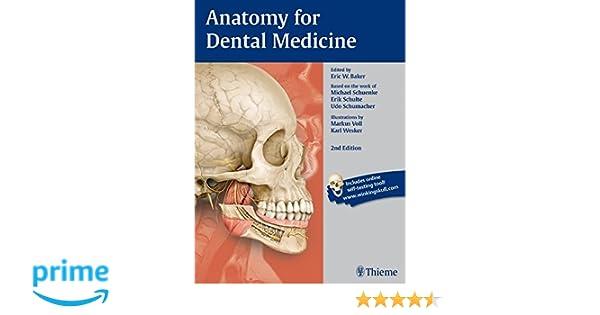 Anatomy for Dental Medicine: 9781626230859: Medicine & Health ...