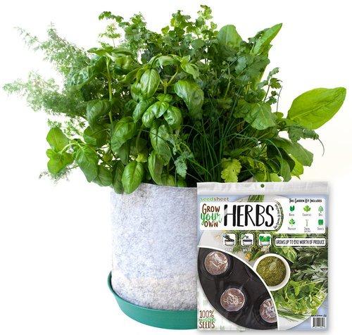 Grow Your Own Herbs Full Garden Kit - AS SEEN ON SHARK TANK - Fast-growing Organic NonGMO Recipe Garden Kit by Seedsheet