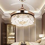 RS Lighting 42 inch Retractable Blades Ceiling Fan and Light for Living Room Bedroom Simple Modern LED Mute Electric Fan Chandeliers With Remote Control