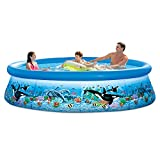 Intex 28125EH 10ft X 30in Ocean Reef Easy Set Pool Set...