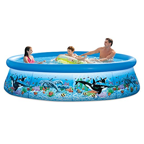 Intex 28125EH 10ft X 30in Ocean Reef Easy Set Pool Set with Filter ()